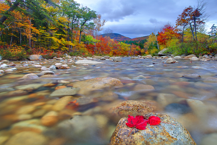 Island Of Isolation - The Swift River, White Mountains, New Hampshire